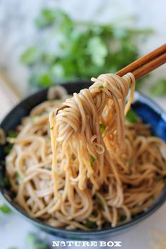 15 minute sesame soba noodles