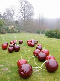 We want to be wherever these giant red cherries are!