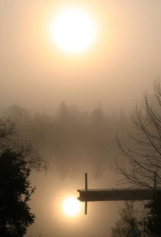 Misty Morning - Cooper River