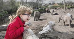 zoo trip little girl glasses lifestyle - Marco Mori