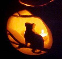 cat pumpkin carving - Google Search
