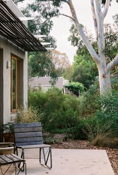 Munro Court Development, Castlemaine Sam Cox Landscape - All For Garden Australian Garden Design, Australian Native Garden, Bush Garden, Garden Trees, Coastal Gardens, Low Maintenance Garden, Back Patio, Garden Spaces, Dream Garden