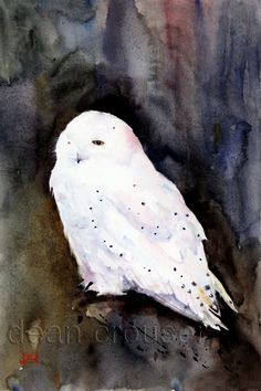 SNOWY OWL Watercolor Print by Dean Crouser