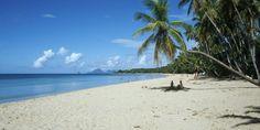 Les Salines Beach in Martinique  #LesSalinesBeach #beach #Martinique #island #cruise #travel #vacation #travelidea #Caribbean #SouthernCaribbean