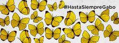 mariposas amarillas - Buscar con Google