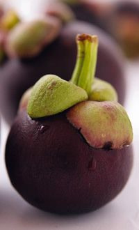 Mangosteen Fruit: Xanthones—found in the whole mangosteen fruit—may help maintain intestinal health, strengthen the immune system, neutralize free radicals, help support cartilage and joint function and promote a healthy seasonal respiratory system