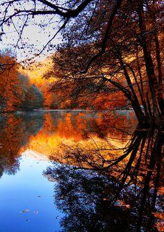 Autumn by Erhan Asik