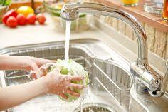 A pia da sua cozinha tem MIL vezes mais bactérias do que a sua privada.