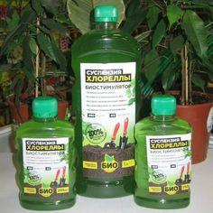 Shampoo, Personal Care, Bottle, Self Care, Personal Hygiene, Flask, Jars
