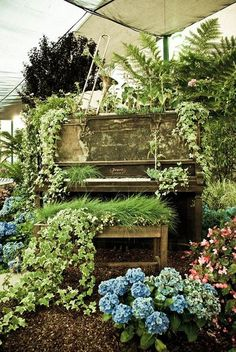 "Outdoor piano garden. That's very cool. You'd need a lot of space, but Craigslist always have free pianos in their ""free"" section. Obviously doesn't need to be in nice condition. They also took the top off the piano bence and turned that into a planter."