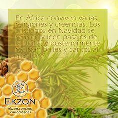 #Ekzon #TuEstilo #Bisutería #Paracord Ekzon.com.mx Whatsapp: 4444254676