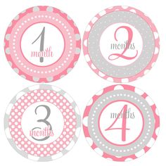 Set of 12 Round Monthly Stickers Pink