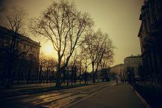 Vienna streets at early morning