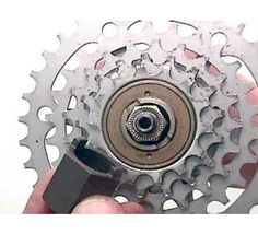 Park Tool Co. » FR-2 : Freewheel Remover : Freewheel & Cassette