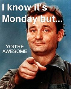 It's Monday You're Awesome quotes quote days of the week monday quotes happy monday monday humor monday morning 9gag Funny, Funny Monday Memes, Funny Drunk, Drunk Texts, Happy Monday Funny, Monday Jokes, Friday Memes, Funny Friday, Happy Today