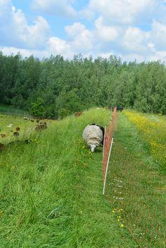 langs het hek met stroom