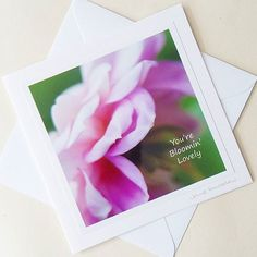 Well it's bloomin' hot today anyway ; Simple Pleasures, Flower Photos, Landscape Photographers, Dahlia, Happy Life, Photo Wall Art, Stationery, Inspire, Day