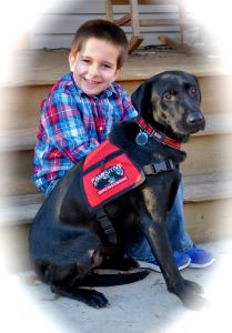 Pawsitive Service Dog Solutions in Northern California places highly trained #autism service dogs with kids all over the US. They train the dogs to tether to stop bolting, to scent search for a wandered child, and to do deep pressure therapy.