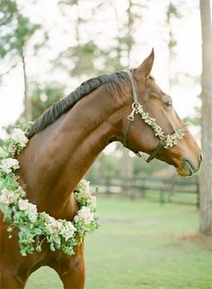 Gorgeous equestrian inspired engagement with rustic details, vibrant florals and set in the lovely setting of a horse stable. #gardenweddings #outdoorengagementsessions #fallengagements #rusticweddings #engagementphotographyposes
