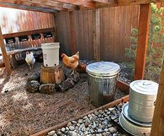 AmazonSmile : 5 Gallon Chicken Waterer - 6 Horizontal Side Mount Poultry Nipples - For Up To 30 Chickens - Coop Feeder : Pet Supplies