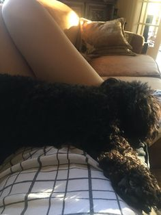 Molly C. Quinn (@MollyQuinn93) | And now I can't move