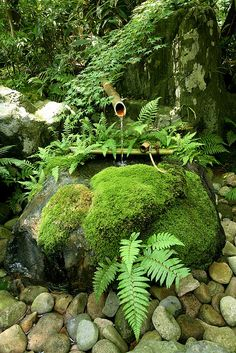 Moss and Stone Basin | Flickr - Photo Sharing!