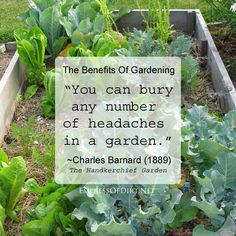"""You can bury any number of headaches in a garden."" ~ Charles Barnard, The Handkerchief Garden (1889) - Original Victorian Urban Food Grower"