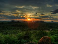 African Sunset in the Save Valley Conservancy, Zimbabwe Wallpaper 1920x1200, Hd Wallpaper, Desktop Wallpapers, Places Around The World, Around The Worlds, World Youth Day, Forest Sunset, Deep Forest, Beauty
