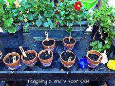 gardening theme