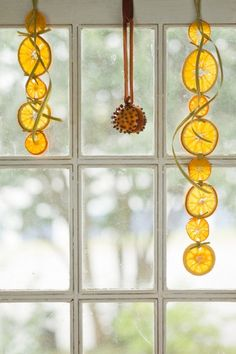 orange peel garlands window decoration christmas - Handwerk und Basteln ♡ Wohnklamotte - New craft Noel Christmas, Modern Christmas, Winter Christmas, Christmas Ornaments, Smell Of Christmas, Christmas Oranges, Christmas Feeling, Christmas Pictures, Christmas Ideas