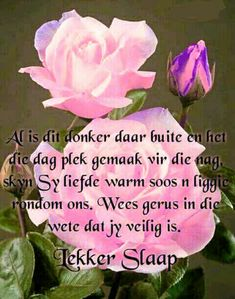 Good Night Blessings, Good Night Wishes, Day Wishes, Good Morning Prayer, Morning Prayers, Evening Greetings, Afrikaanse Quotes, Goeie Nag, Christian Messages