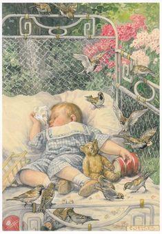 Ansicht en Postkaarten Verzameling. Met o.a. tekeningen van Cornelis Jetses. Aap Noot Mies en Ot en Sien. with a teddy bear