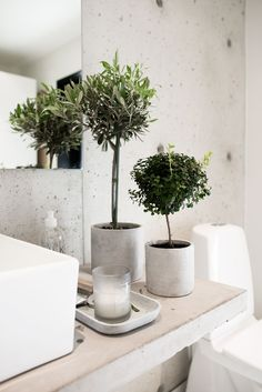 Bathroom Decor green bathroom with plants, green decoration for the bathroom in a concrete pot *** grne Badezimmerpflanzen in Betonvasen / Betontopf, Badezimmerdekoration aus Beton und grnen Pflanzen Small Plants, Green Plants, Indoor Plants, Fake Plants, Concrete Pots, Concrete Bathroom, Concrete Floor, Concrete Wall, Bathroom Plants