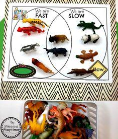 Zoo Activities Preschool, Zoo Animal Activities, Preschool Jungle, Zoo Animal Crafts, Learning Activities, Jungle Theme Activities, Pet Theme Preschool, Summer Preschool Themes, Preschool Printables