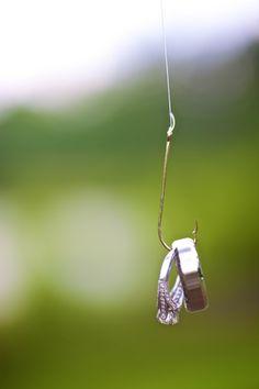wedding rings on fish hook