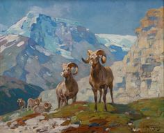 "Carl Clemens Moritz Rungius of the Big HornSigned ""C. Rungius"" lower rightOil on canvas, 16 by 20 inc. Wildlife Paintings, Wildlife Art, Landscape Paintings, Big Horn Sheep, Hunting Art, Fine Art Auctions, Mural Painting, Sports Art, Outdoor Art"