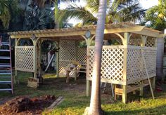 - New shade house pergola for the 'chids. My husband must really love me! Window Greenhouse, Small Greenhouse, Greenhouse Ideas, Garden Paths, Garden Beds, Decks, Orchid House, Florida Plants, Leelah