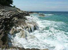 Premantura - - Medulin, Croatia - Private accommodation units - Adriatic.hr