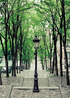Montmartre Paris in Summer Photograph- Emerald, black, gray, Stairs to Sacré Coeur, Wall Decor Print