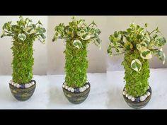 Spiral Garden, Easy Garden, Garden Ideas, Indoor Water Garden, Indoor Plant Pots, House Plants Decor, Plant Decor, Diy Projects Cement, Buddha Garden