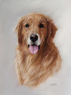 Draw Dogs If you are reading this, I want you to know I love my dogs. Colorful Drawings, Cute Drawings, Animal Drawings, Drawing Animals, Golden Retriever Art, Golden Retrievers, Fantastic Art, Dog Portraits, Acrylic Painting Canvas