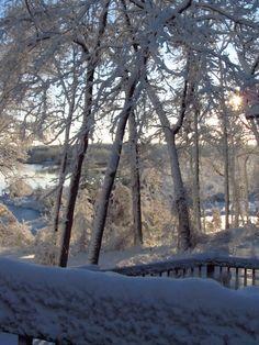 Snowy Morning at Amigo