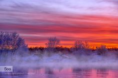 winter by sherlockholmes1. Please Like http://fb.me/go4photos and Follow @go4fotos Thank You. :-)