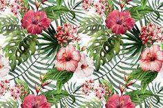 Resultado de imagen para tropical flower draw
