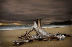 Art is where you find it ! Cairns Australia c Steve Turner