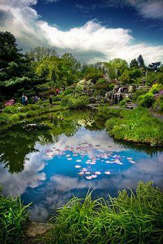 Oslo Botanical Garden, Norway (by Faisal!)