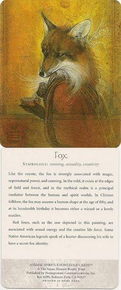 Symbology of a fox Animal Spirit Guides, My Spirit Animal, My Animal, Fox Totem, Fox Spirit, Fabulous Fox, Animal Symbolism, Power Animal, Wolf