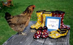 Sara Rosedahl is the talented artist behind the Sloggers Chicken Collection.
