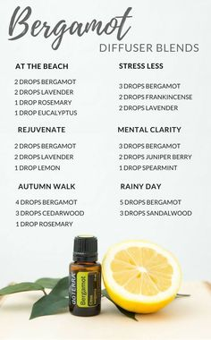 Try these amazing doTERRA Essential Oil Blends. Use them for purifying the air, improving mood, and promoting a calm, relaxed atmosphere Essential Oil Diffuser Blends, Doterra Essential Oils, Young Living Essential Oils, Bergamot Essential Oil Uses, Cedarwood Essential Oil Uses, Cedarwood Oil, Oils For Diffuser, Clarity Essential Oil, Essential Oil Blends