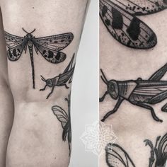 "Nicole comes all the way to Berlin, again and again, to get something ""with wings"" on her leg! Grasshopper and dragonfly this time. Thank you so much! #grasshopper #dragonfly #beetle #dotwork #blackwork #bold #blackworkers #tattoo #herzdame #taetowierungen #erntezeit"